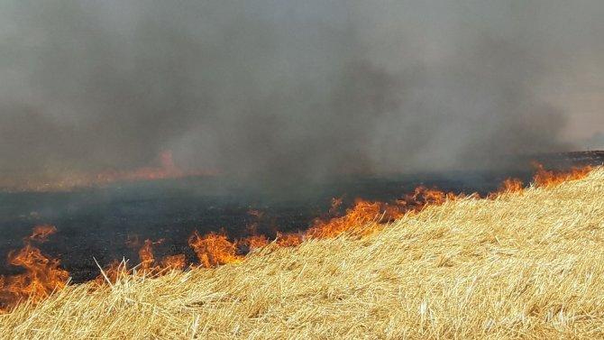 Büyük Beşkavak ve Çölköyü arasında 3500 dekarlık ekili alan kül oldu