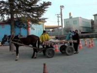 Ambulans Yerine At Arabasıyla Taşıdı