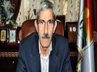 BDP'li Ferhan Türk görevine iade edildi