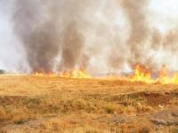 Yeniceoba'da Tarla Yangını