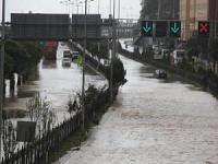 'Sahil yolu Karadeniz iklimine uygun değil'