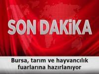 Bursa, tarım ve hayvancılık fuarlarına hazırlanıyor