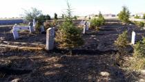 Mezarlığı temizleyelim derken yaktılar