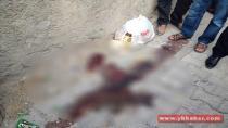 Cizre'de yasağın ardından ilk kareler