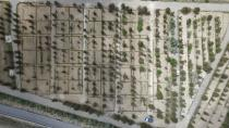 Cihanbeyli'ye hobi bahçeleri